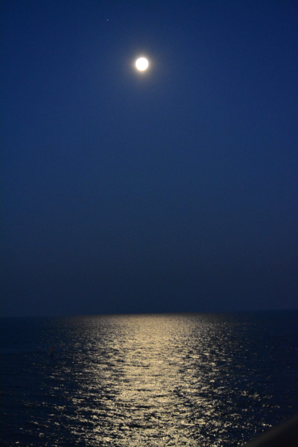 Full Moon At Night At Clearwater Beach